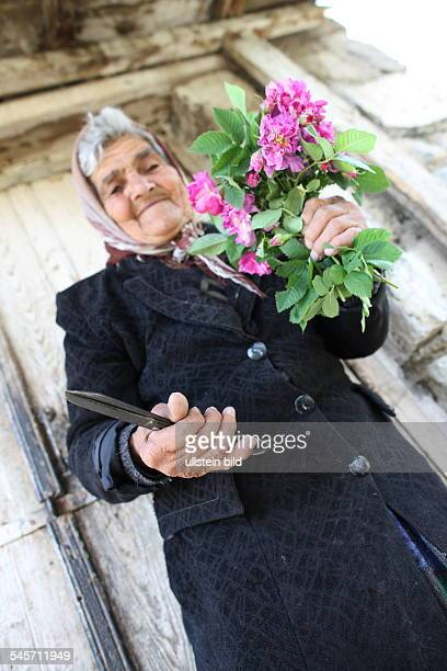 Armenia old Woman with flower bouquet