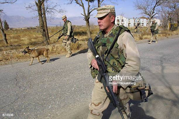 Army soldiers with mine sniffing dogs patrol a road December 2 2001 near the Bagram Air Base near Kabul Afghanistan While the base is under the...