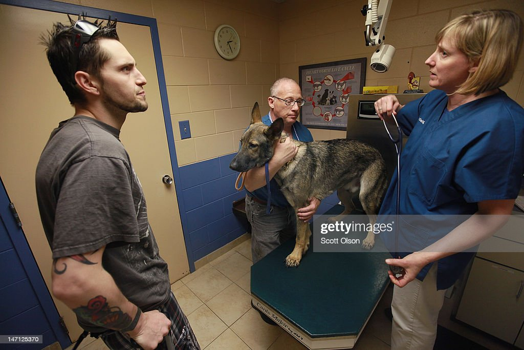 Army veteran Brad Schwarz (L) speaks with veterinarian Leslie Dahl (R) while veterinary assistant Guy Marzano holds Schwarz's service dog Panzer during an examination at Southwest Animal Care Center May 3, 2012 in Palos Hills, Illinois. Schwarz uses Panzer to help him cope with issues related to post-traumatic stress disorder (PTSD) he has experienced since returning from a 2008 tour in Iraq. In addition to suffering from PTSD Schwarz has memory loss related to Traumatic Brain Injury (TBI) and he must walk with a cane because of vertebrae and nerve damage in his back and legs. Ten days before he was scheduled to rotate home from a 15-month deployment in Iraq, his second, the Humvee in which he was riding was struck by an Improvised Explosive Device (IED). Of the 5 soldiers riding in the vehicle, which caught fire after the explosion, Schwarz was the only one to survive.