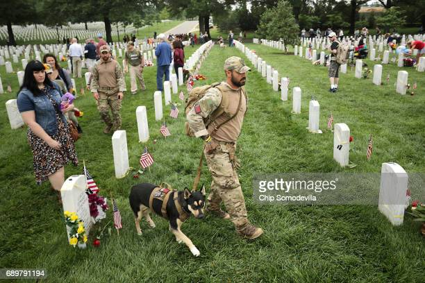 S Army veteran Jonathan Lopez of Miami Florida and his dog 2yearold huskie Zoe walk through Section 60 at Arlington National Cemetery on Memorial Day...