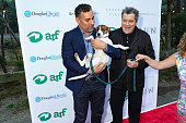 Animal Rescue Fund Of The Hamptons Bow Wow Meow Ball