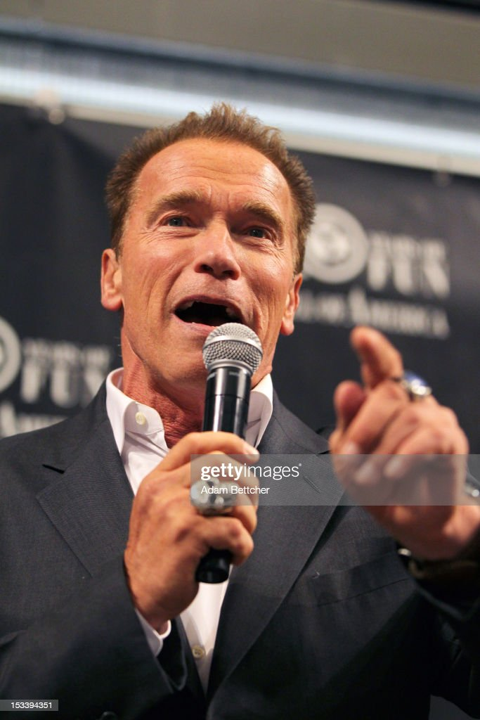 <a gi-track='captionPersonalityLinkClicked' href=/galleries/search?phrase=Arnold+Schwarzenegger&family=editorial&specificpeople=156406 ng-click='$event.stopPropagation()'>Arnold Schwarzenegger</a> signs copies of 'Total Recall: My Unbelievably True Life Story' at the Mall of America on October 4, 2012 in Bloomington, Minnesota.