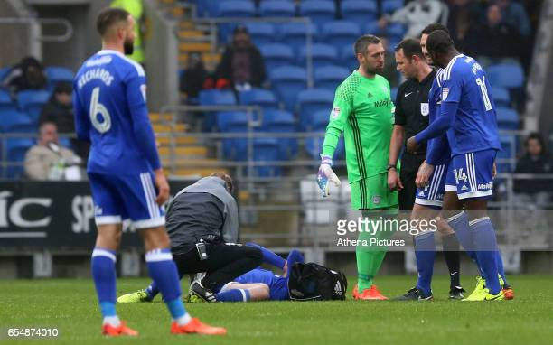 Aron Gunnarsson of Cardiff City receives treatment during the Sky Bet Championship match between Cardiff City and Ipswich Town at The Cardiff City...