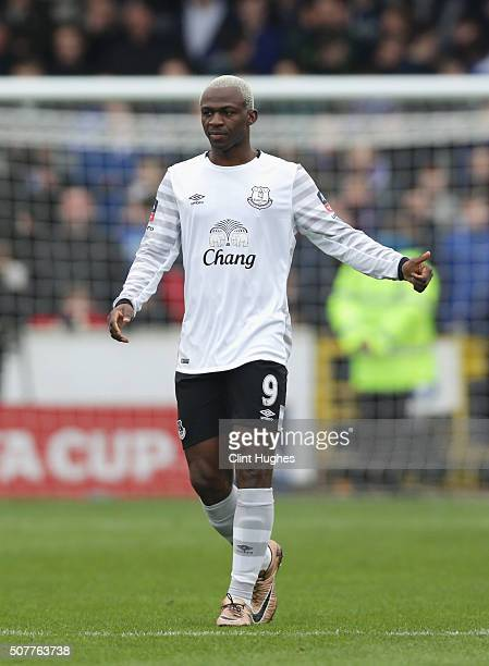 Arouna Kone of Everton celebrates scoring the opening goal during the Emirates FA Cup Fourth Round match between Carlisle United and Everton at...