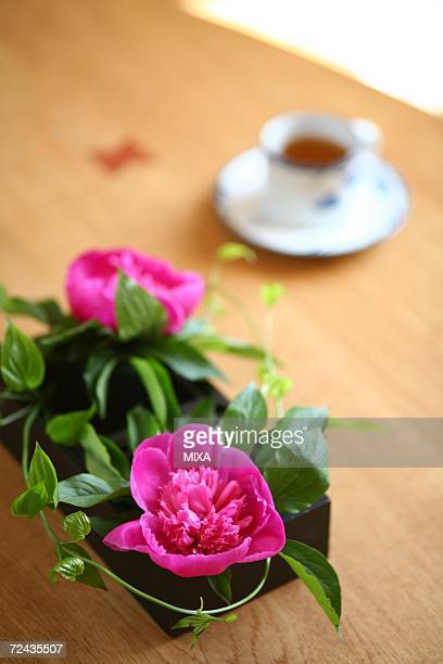 Arranged flower on table