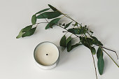 flat lay photo of eucalyptus branches and leaves next to a white soy candle in silver container on a white background