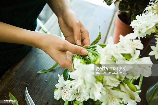 Arranging fresh flowers