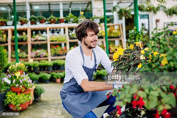 Arranging the flowers in the garden center