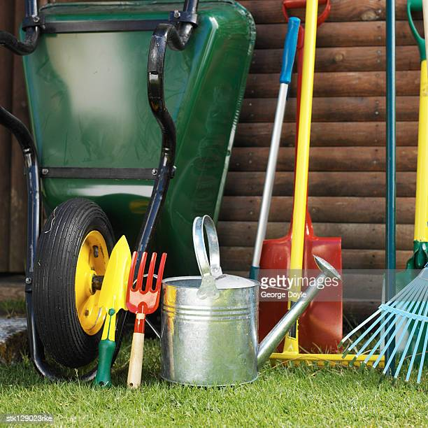 Array of gardening tools beside a wheelbarrow in a yard