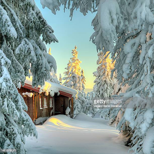 Arriving at the cabin in the winter