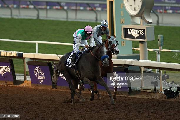Arrogate ridden by jockey Mike Smith wins the Breeders' Cup Classic race on day two of the 2016 Breeders' Cup World Championships at Santa Anita Park...