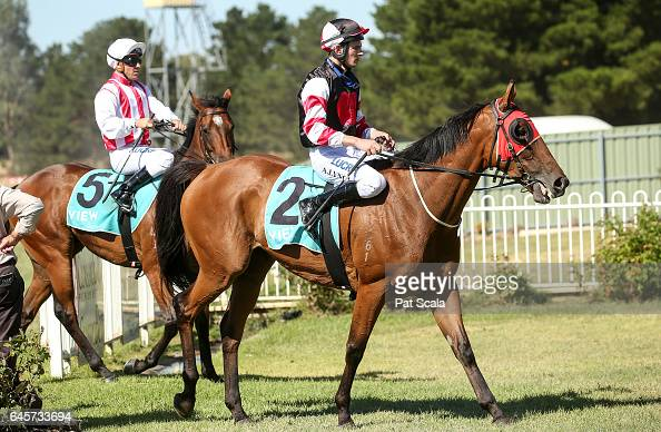 Arron Lynch returns to the mounting yard on The Mighty Jrod after winning ClassicBet BM58 Handicap at Ararat Racecourse on February 27 2017 in Ararat...