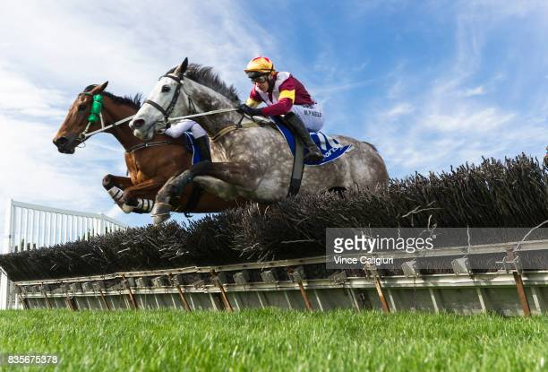 Arron Lynch riding Shez Eltraordinary jumps the 2nd Last hurdle with Martin Kelly riding Marilisa before winning Race 2 City of Ballarat Maiden...