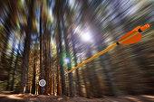 3D render of an arrow speeding through a motion blurred forest toward an archery target.