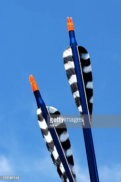 arrow pair