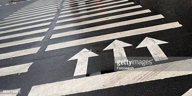 Arrow signs with crosswalk markings on the road