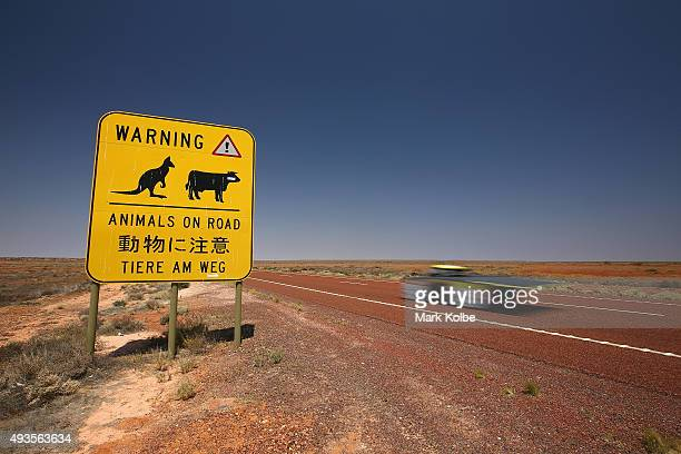 Arrow1GT of Clenergy TeamArrow Australia passes an animals on road warning sign as it races in the Challenger Class on October 21 2015 outside of...