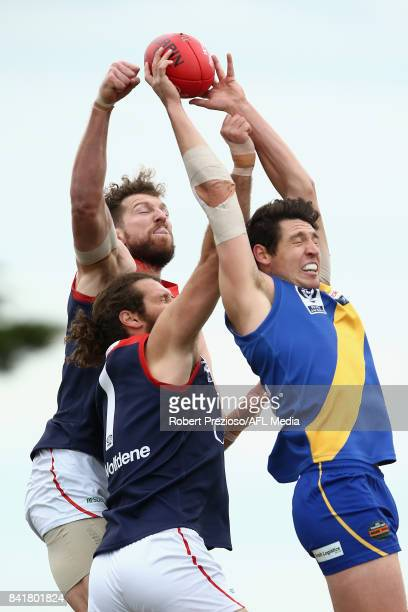 Arryn Siposs of Williamstown contests the ball during the VFL Qualifying Final match between Williamstown and Casey at Burbank Oval on September 2...