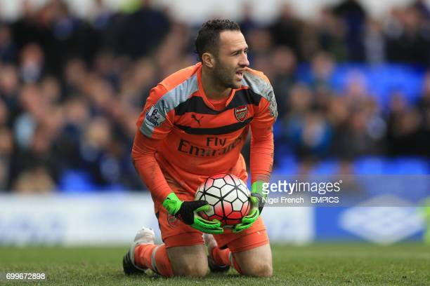 Arsenal goalkeeper David Ospina holds the ball