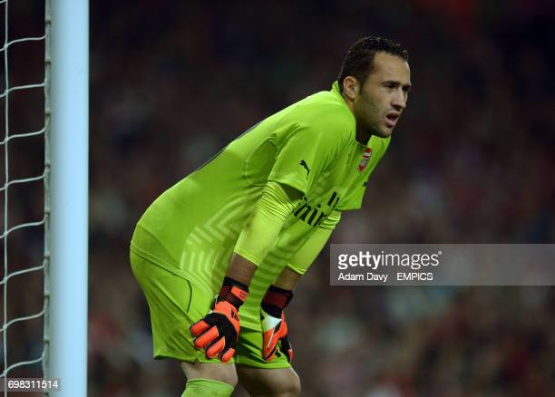Arsenal's David Ospina during the game