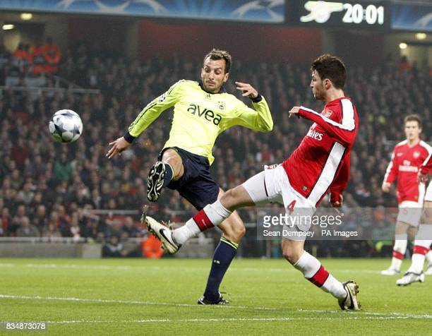 Arsenal's Francesc Fabregas and Fenerbahce's Luis Edu Dracena battle for the ball