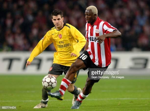 Arsenal's Francesc Fabregas and PSV Eindhoven's Arouna Kone