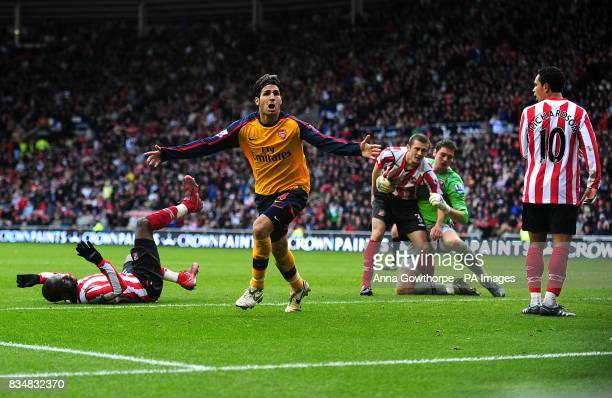 Arsenal's Francesc Fabregas celebrates scoring the equaliser