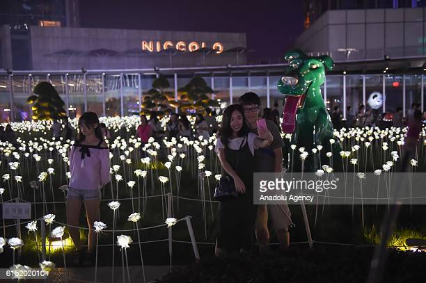 Art installation made up of 25000 LED roses are being displayed at IFS in Chengdu China on October 17 2016 About 25000 LED white rose light every...