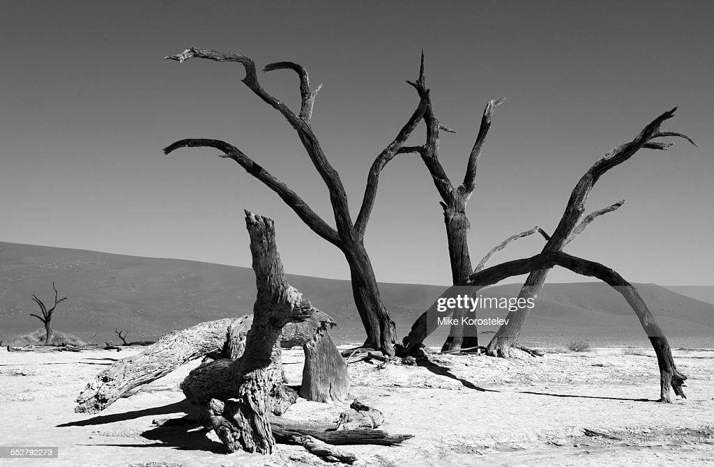 Art of nature, Namib desert, Death valley, Africa
