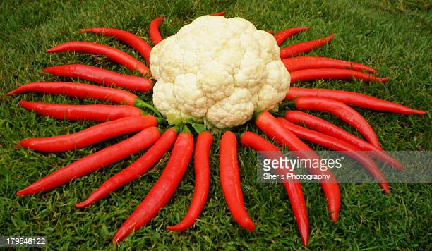 Art of vegetables