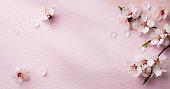 art  spring flowers frame  background