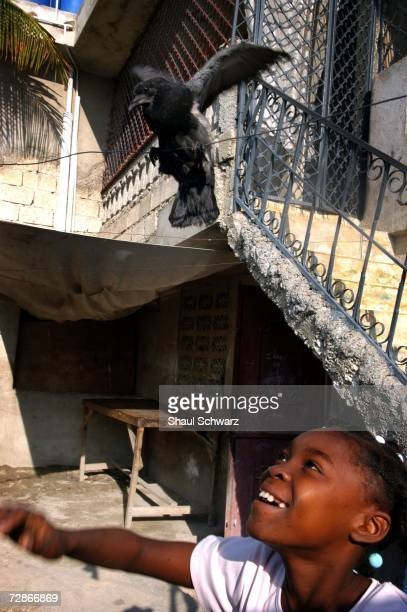 Arthemise Jean 12yearsold plays with a pet pidgeon at her 'host' family's home on April 6 2005 in PortauPrince Haiti One of seven children from an...