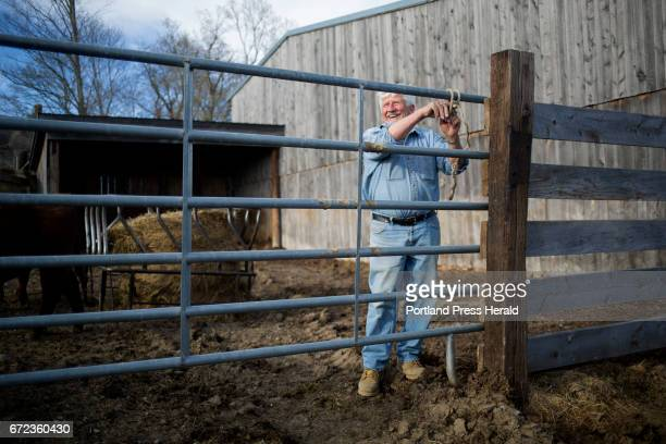 Arthur Randall Jr laughs with two of his farm hands as they move some of the bulls into a new pen