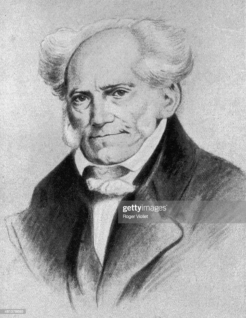schopenhauer the world as will and representation pdf