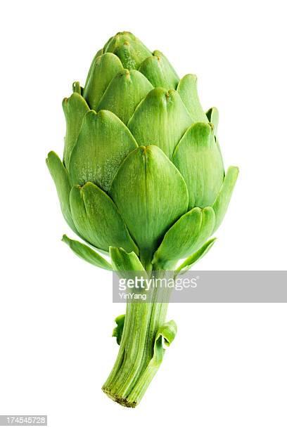 Artichauts et de légumes, des Fleur comestible Bud de la nourriture sur fond blanc