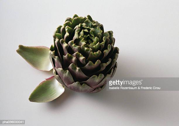 Artichoke with two artichoke leaves, close-up, white background