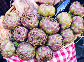 The artichokes are the basis of numerous dishes of traditional Italian cuisine, and especially of Rome.