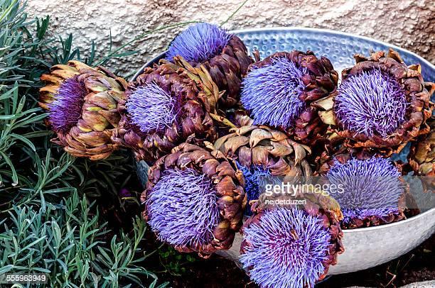 Artichokes Flower