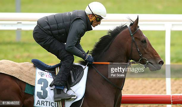Articus works at Werribee Racecourse on October 10 2016 in Werribee Australia