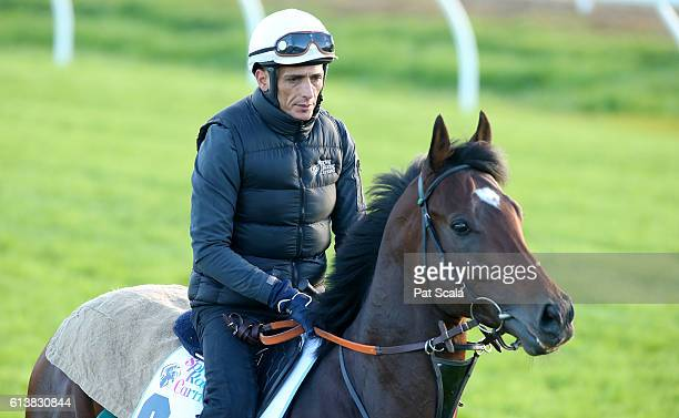 Articus works at Werribee Racecourse on October 11 2016 in Werribee Australia