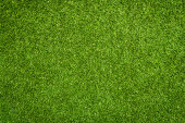 Close up of synthetic green grass texture