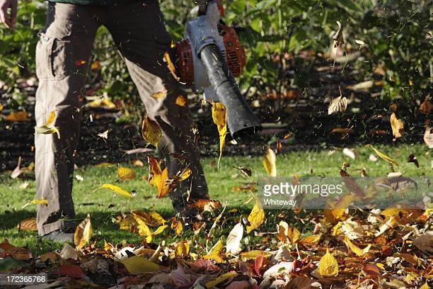 Finto vento soffia foglie di autunno foglia soffiatore