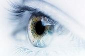 Macro shot of a human eye.