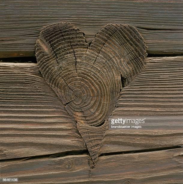 Artistically worked pin in wooden wall Photography about 1985 ['Zierschrot' oder 'Klingschrot' nennt man diese kunstvoll gearbeiteten Zapfen die zur...