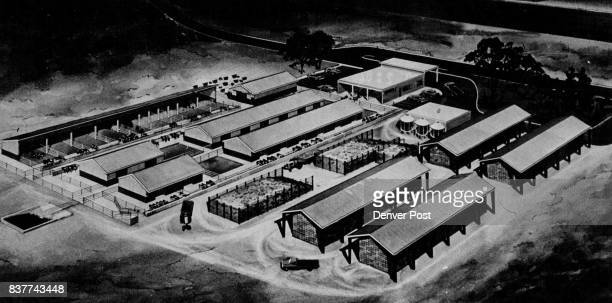 Artist's concept of Proposed MillionDollar CSU Dairy Research Facility Sattla would be kept in easytodean concrete pens and all wastes would be...