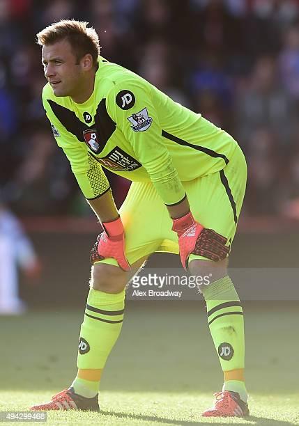 Artur Boruc of AFC Bournemouth looks on during the Barclays Premier League match between AFC Bournemouth and Tottenham Hotspur at Vitality Stadium on...