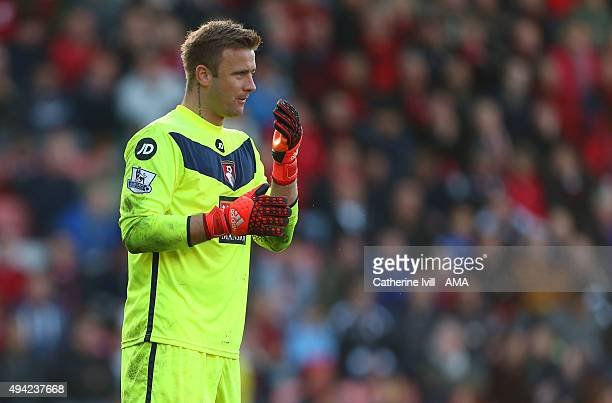 Artur Boruc of Bournemouth during the Barclays Premier League match between AFC Bournemouth and Tottenham Hotspur at Vitality Stadium on October 25...