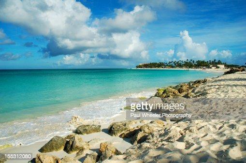 Aruba Rocks!! Druif Beach. : Stock Photo