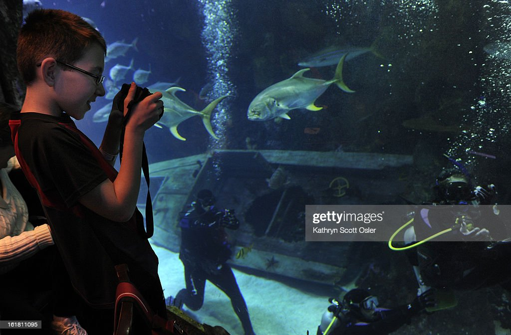 As his sister Brittney Martin,18, who has spina bifida, makes her way under water, Treyton Martin snaps a few photos through the tank glass from the aquarium restaurant. Two teens from the Riley Children's Foundation are learning how to scuba dive with instructors from the A-1 Scuba and Travel Aquatics Center at the Downtown Aquarium.