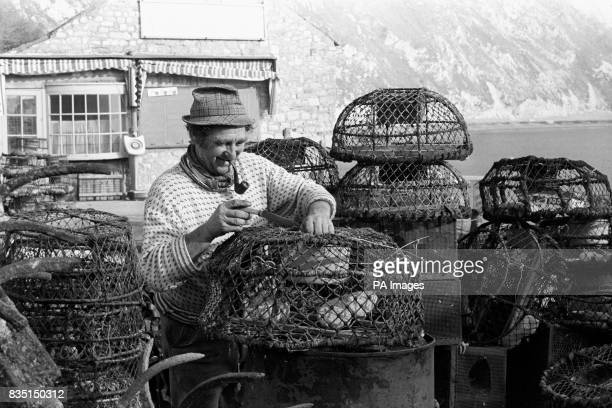 As much a part of Lulworth Cove as the Dorset beauty spot itself is lifelong fisherman Jim Miller attending to his lobster pots in the wintry sunshine